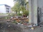 okrasné prvky v okolí asociálnych príbytkov