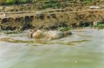 india-photos-56-560x372